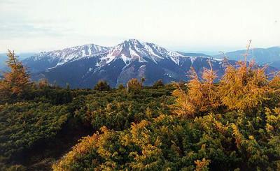 the Carpathian mountains