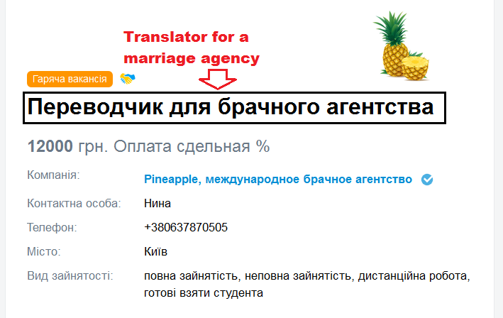 translation scam